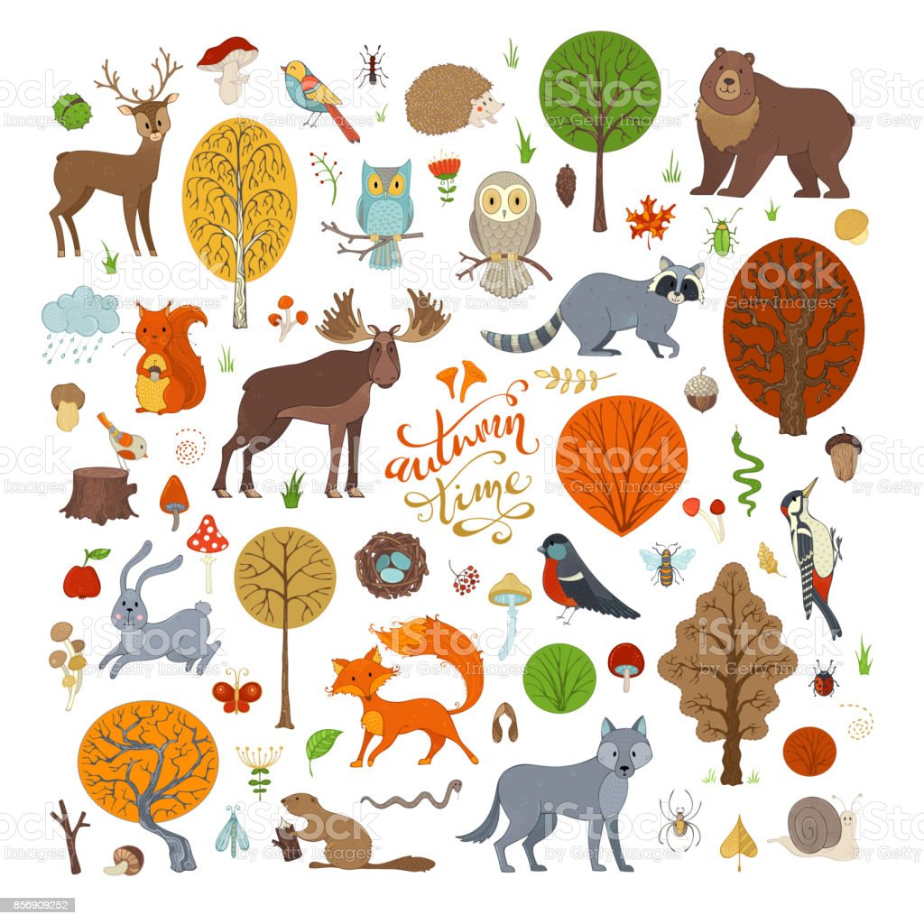 Vector set of autumn forest trees and animals. vector art illustration