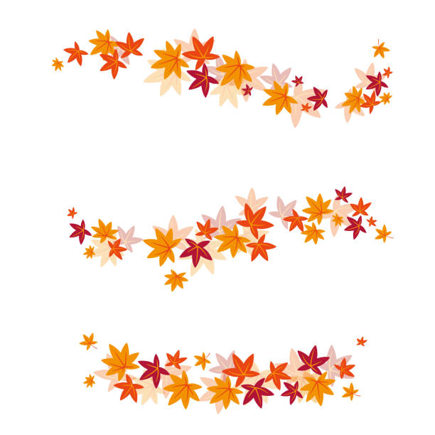 Vector set of autumn leaves Vector illustration autumn leaf color stock illustrations
