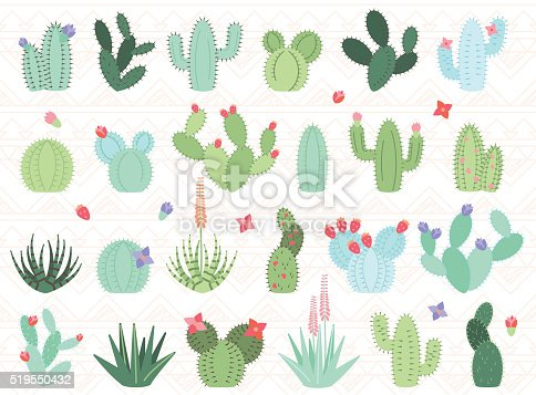 Vector Set of Cactus and Succulent Plants. No transparencies or gradients used. Large JPG included. Each element is individually grouped for easy editing.