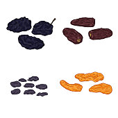 Vector Set of Cartoon Dried Fruits. Prune, Date Fruit, Raisin and Dried Apricot.