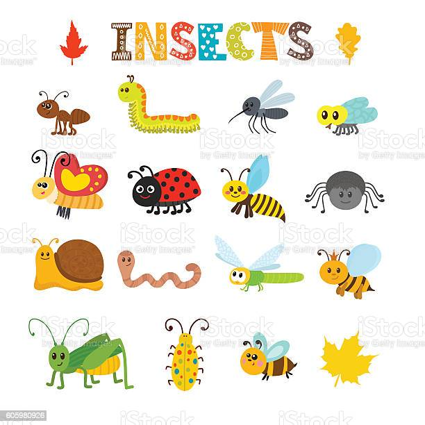 Vector set of cartoon insects colorful bugs collection vector id605980926?b=1&k=6&m=605980926&s=612x612&h=od8nbcgvzfr mlyavthzexugj wrsbbgdr6khigbgv0=