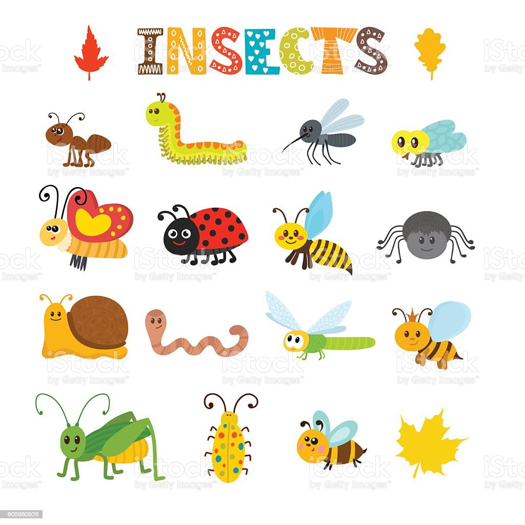 Vector set of cartoon insects. Colorful bugs collection vector art illustration