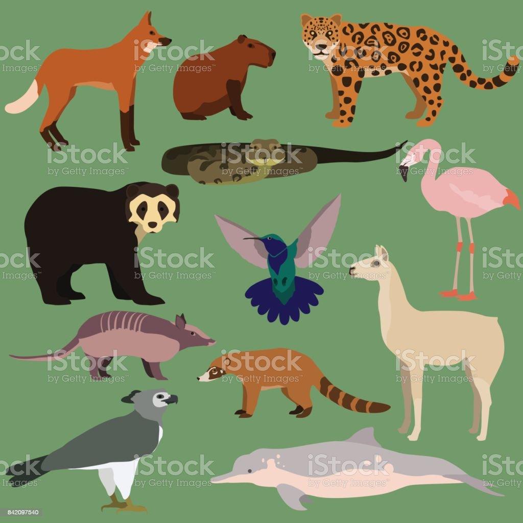 Vector set of cartoon south american animals. vector art illustration