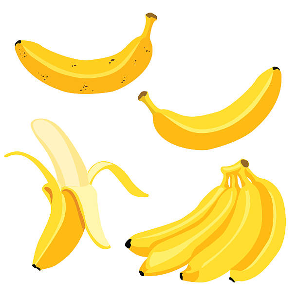 Vector Set of Cartoon Yellow Bananas. Vector Set of Cartoon Yellow Bananas. Overripe Banana, Single Banana , Peeled Banana, Bunch of Bananas. banana stock illustrations