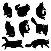 Vector set of cat silhouettes. Different postures: sitting, lying, resting, playing, hunting. Isolated on white background.