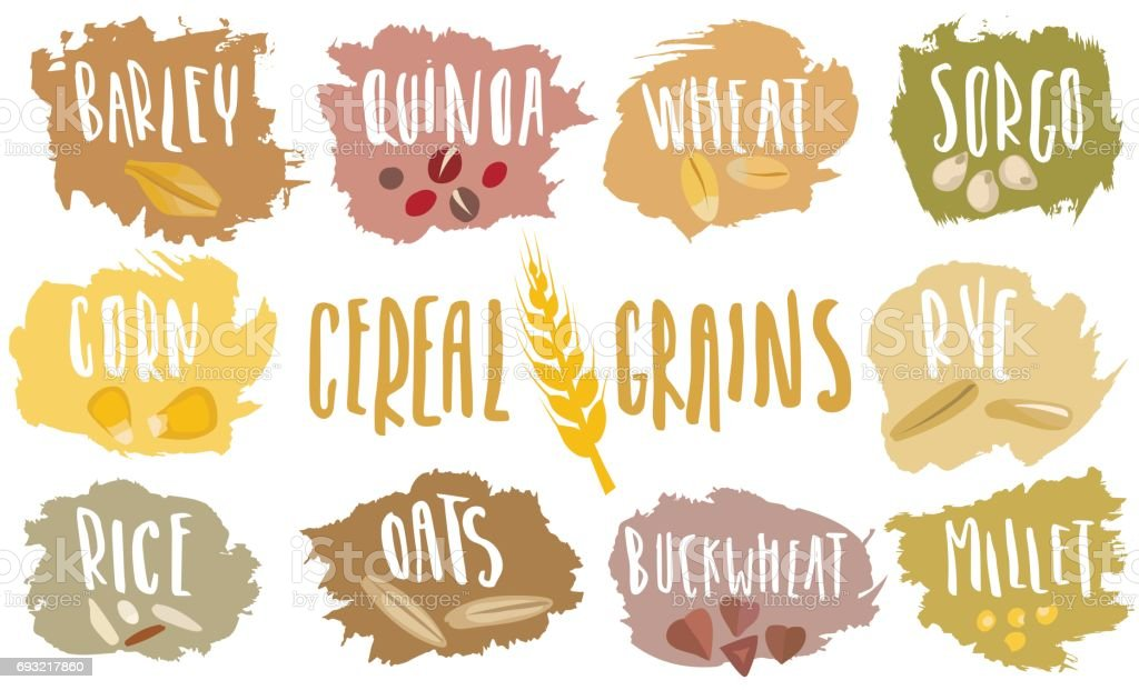 Vector set of cereal emblems with white handwritten lettering and hand-drawn stylized grains. vector art illustration