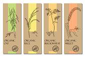 Healthy food, bio, organic, natural product