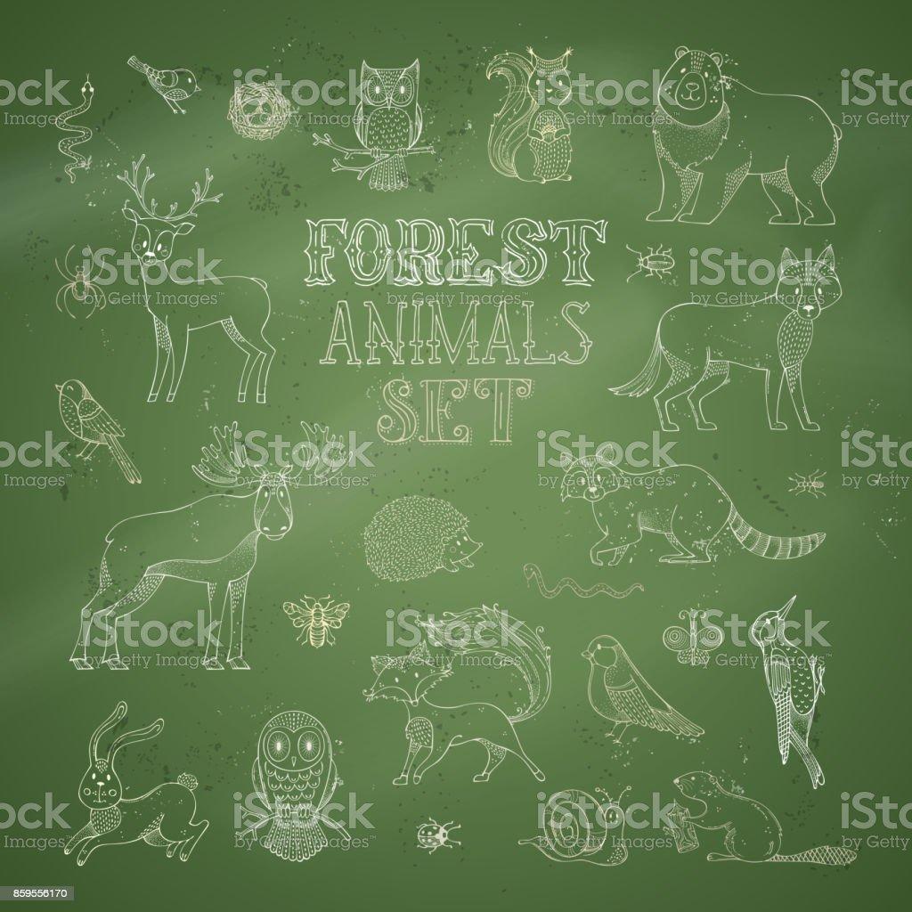 Vector set of chalk forest animals on green blackboard background. vector art illustration