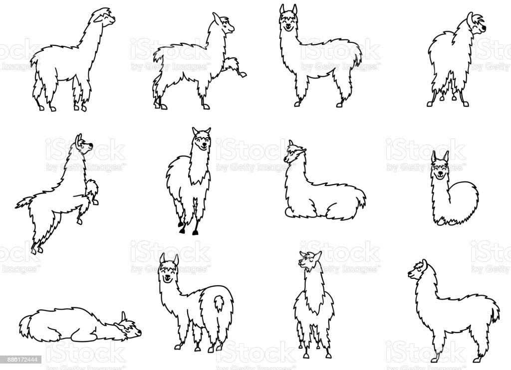 Vector set of characters. Illustration of south Americas cute lama with decorations. Isolated outline cartoon baby llama. Hand drawn Peru animal  guanaco, alpaca, vicuna. Drawing for print, fabric. vector art illustration