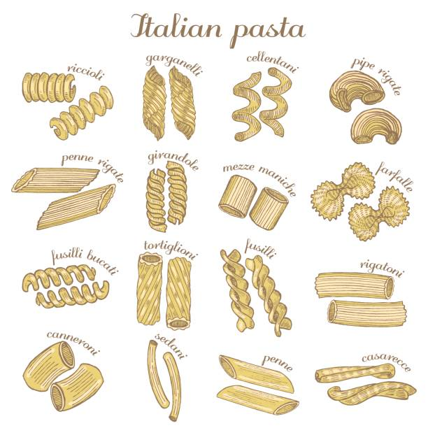 vector set of colored different pasta shapes vector set of colored hand drawn different pasta shapes penne stock illustrations