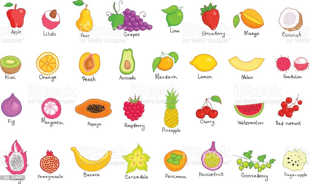Vektorset Von Farbigen Handgezeichnete Obst Und Beerenicons ...
