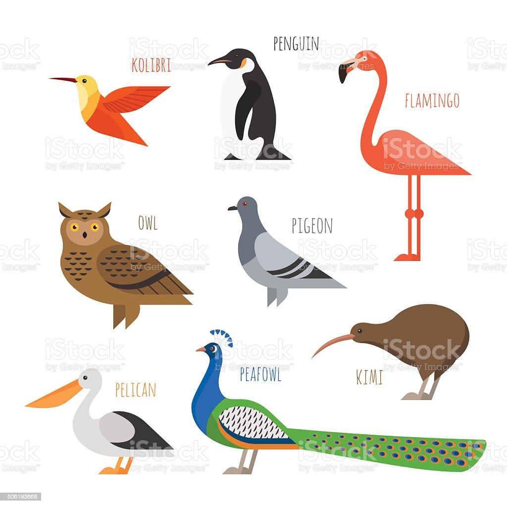 Vector set of Colorful bird icons. Owl, hummingbird, pigeon vector art illustration