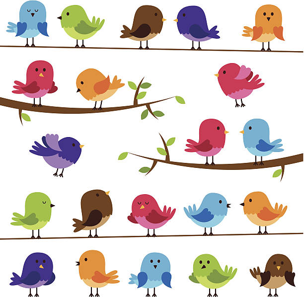 vector set of colorful cartoon birds - birds stock illustrations