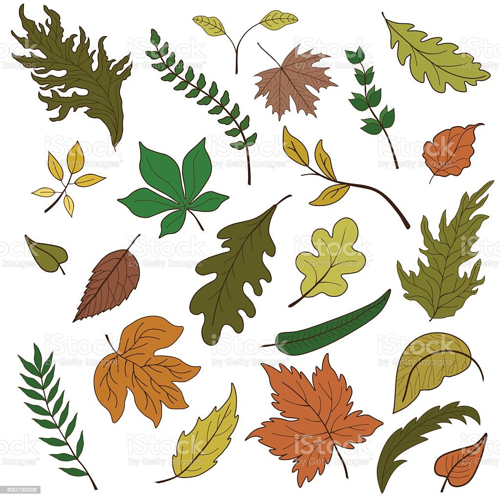 Vector set of colorful leaves vector art illustration