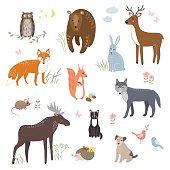 Vector set of cute animals: fox, bear, rabbit, squirrel, wolf, hedgehog owl deer cat dog mouse Design elements