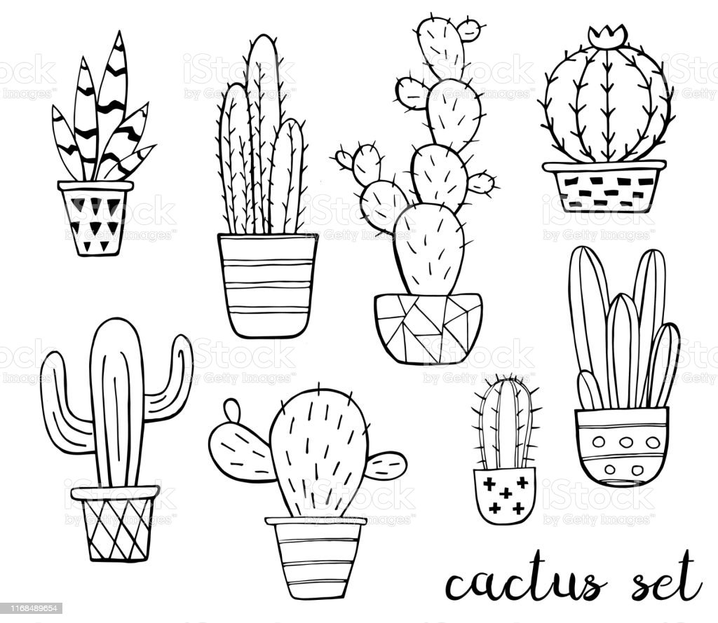 Vector Set Of Cute Black And White Sketch Cactus Isolated On White Background Cactus Family Hand Drawn Ink Illustration Line Drawing Home Decor Vector Illustration Black Outlines Stock Illustration Download Image