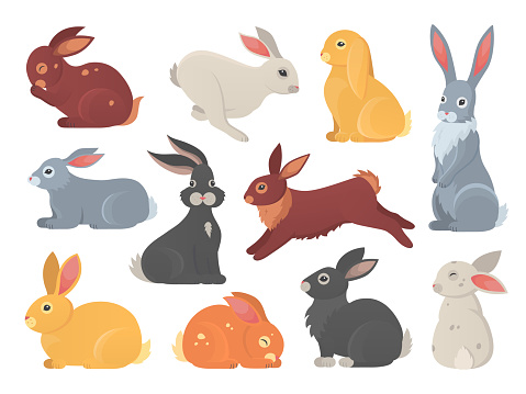 Vector set of cute rabbits in cartoon style. Bunny pet silhouette in different poses. Hare and rabbit colorful animals collection.