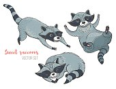 Vector illustration: set of cute characters raccoons. Isolated templates for design.
