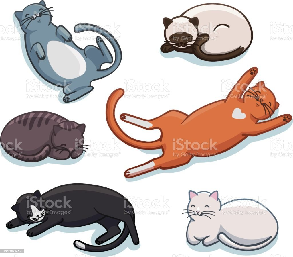 cbe33abd3d04b Vector Set Of Cute Sleeping Cats Funny Cartoon Kittens In Different ...