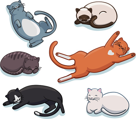 Vector set of cute sleeping cats. Funny cartoon kittens in different poses and colors