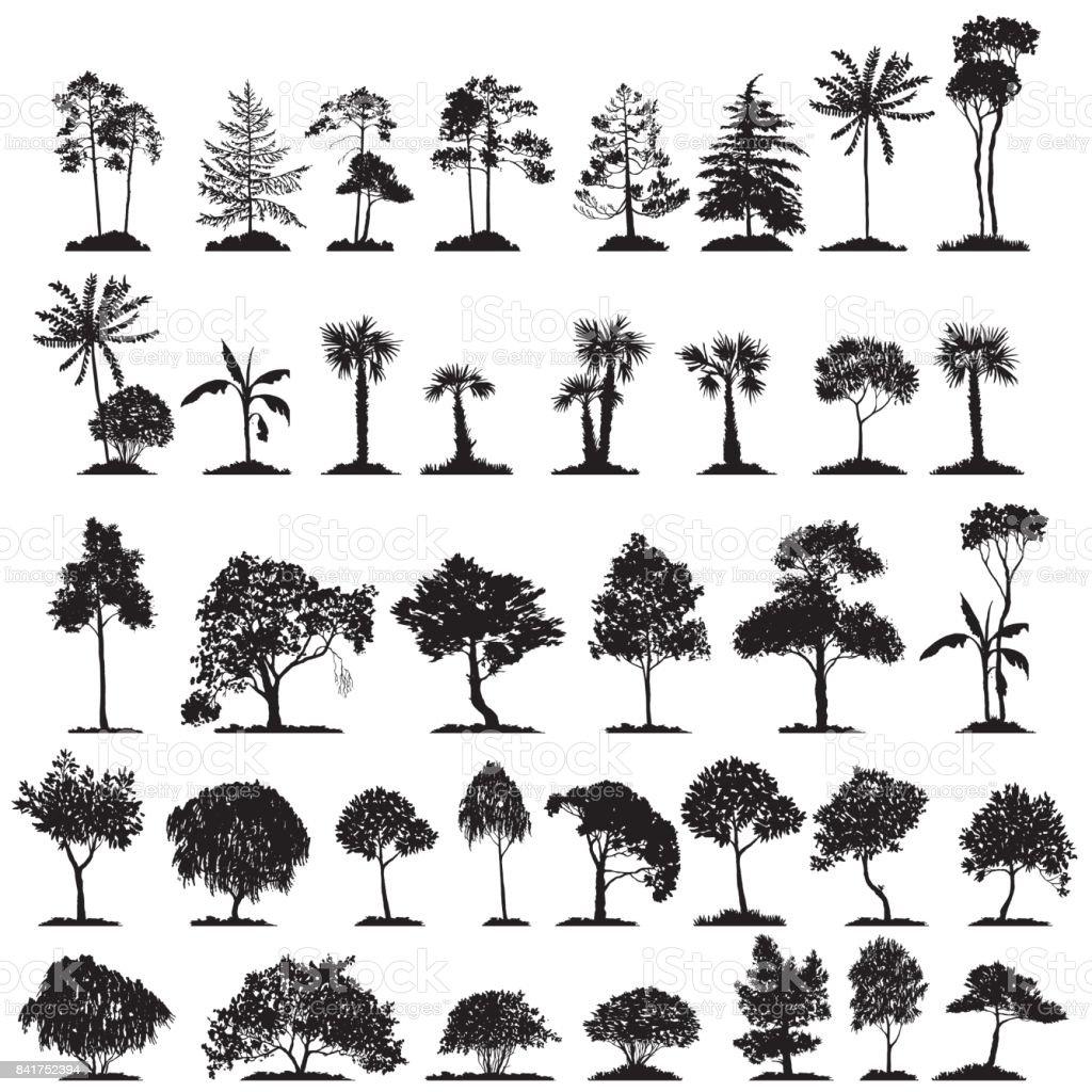 vector set of deciduous trees vector art illustration