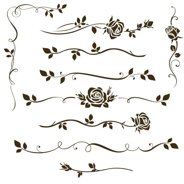 Vector set of decorative calligraphic elements, floral dividers, ornaments with rose silhouettes and leaves for wedding invitation design and page decor. Vector illustration rose flower stock illustrations