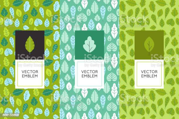 Vector set of design elements for packaging and seamless patterns vector id866155858?b=1&k=6&m=866155858&s=612x612&h=u2dhuvpiooyvbmhispujep4uynbbvtp2srp7rtryfd4=