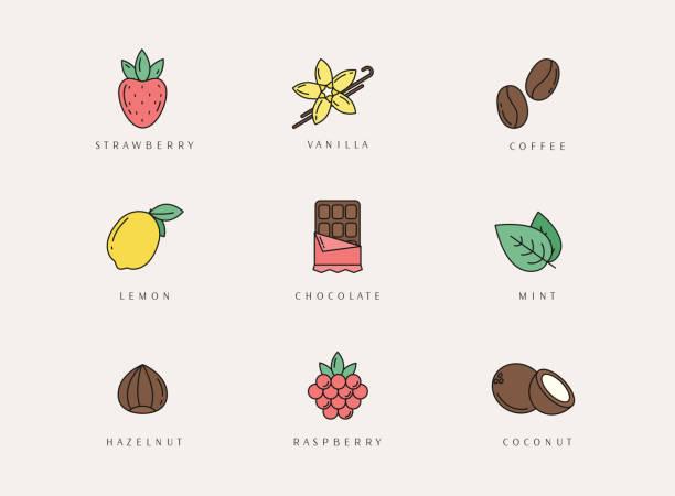 stockillustraties, clipart, cartoons en iconen met vector set van ontwerpelementen, logo ontwerpsjabloon, pictogrammen en badges van verschillende smaak. - vanille