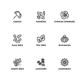 Vector set of design elements, logo design template, icons and badges for medical plants. Line icon set, editable stroke.