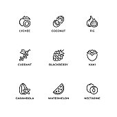 Vector set of design elements, logo design template, icons and badges for fruit. Line icon set, editable stroke.