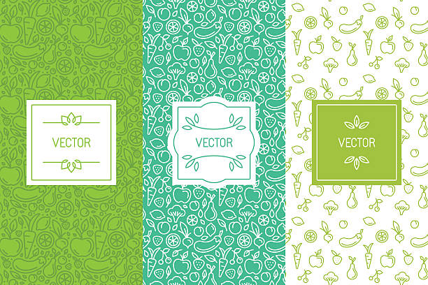 ilustraciones, imágenes clip art, dibujos animados e iconos de stock de vector set of design elements, seamless patterns and backgrounds - alimentos orgánicos