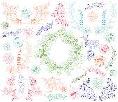 Vector Set of Detailed Succulent Plants, Cactus and Succulent Wreath