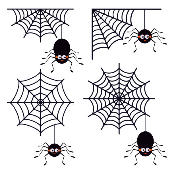vector set of different cute smiling black spiders hanging on a string of cobwebs with spederwebs icon isolated on white background. - tarantula stock illustrations