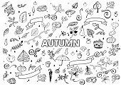 Vector set of Different Hand Drawn Autumn Design Elements. Vector Autumn Doodle Illustration. Autumn Doodles. Coloring book. Leaves, curls, mushrooms, hedgehog, chestnut.