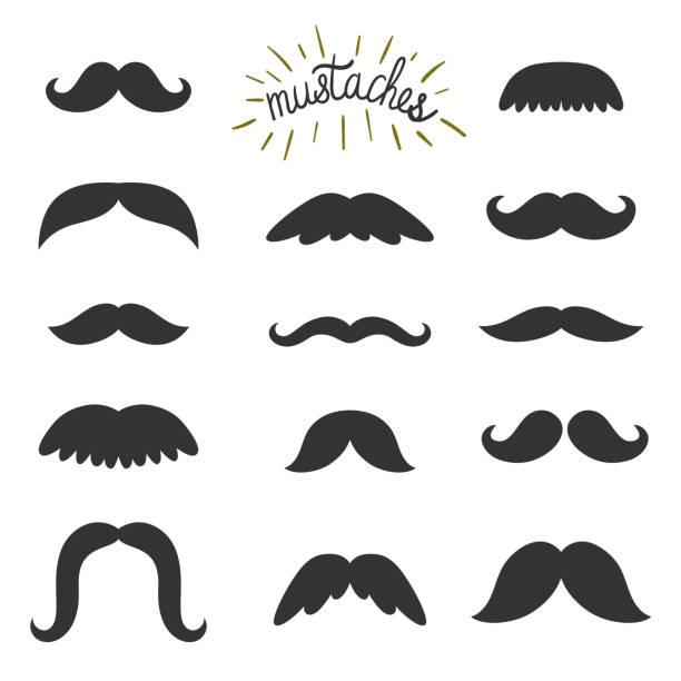 ilustrações, clipart, desenhos animados e ícones de vetor definido dos bigodes diferentes. todos os elementos são isolados em branco. elementos vintage. fundo de hipster. - bigode