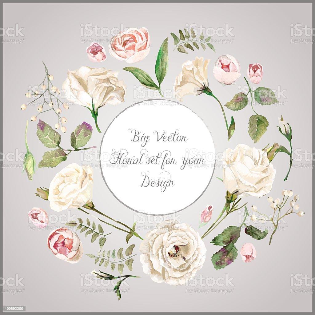 Vector Set Of Different White Beige Flowers For Design Stock Vector