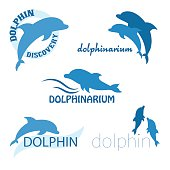vector set of dolphinarium design of logo with dolphins