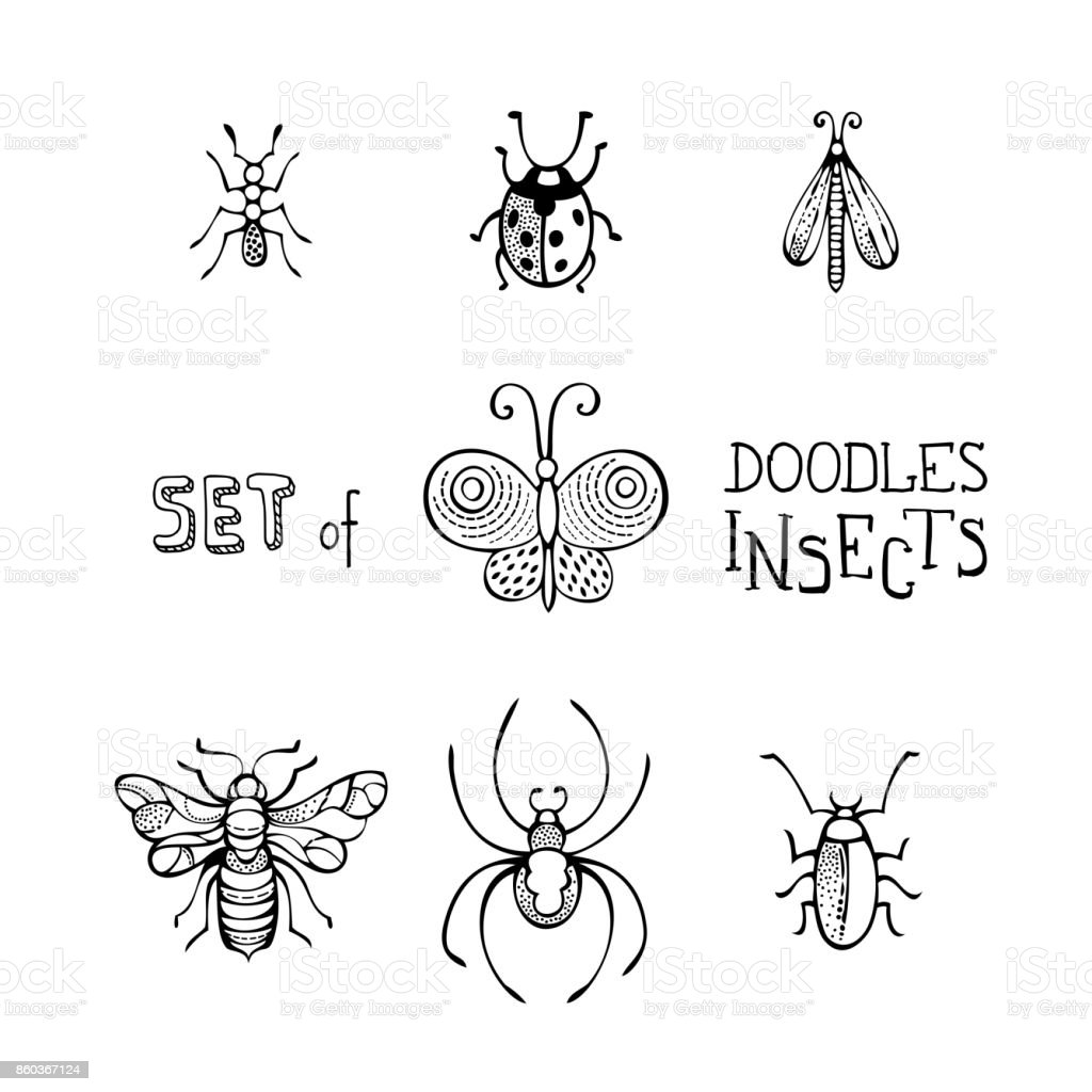 Vector set of doodles insects. vector art illustration