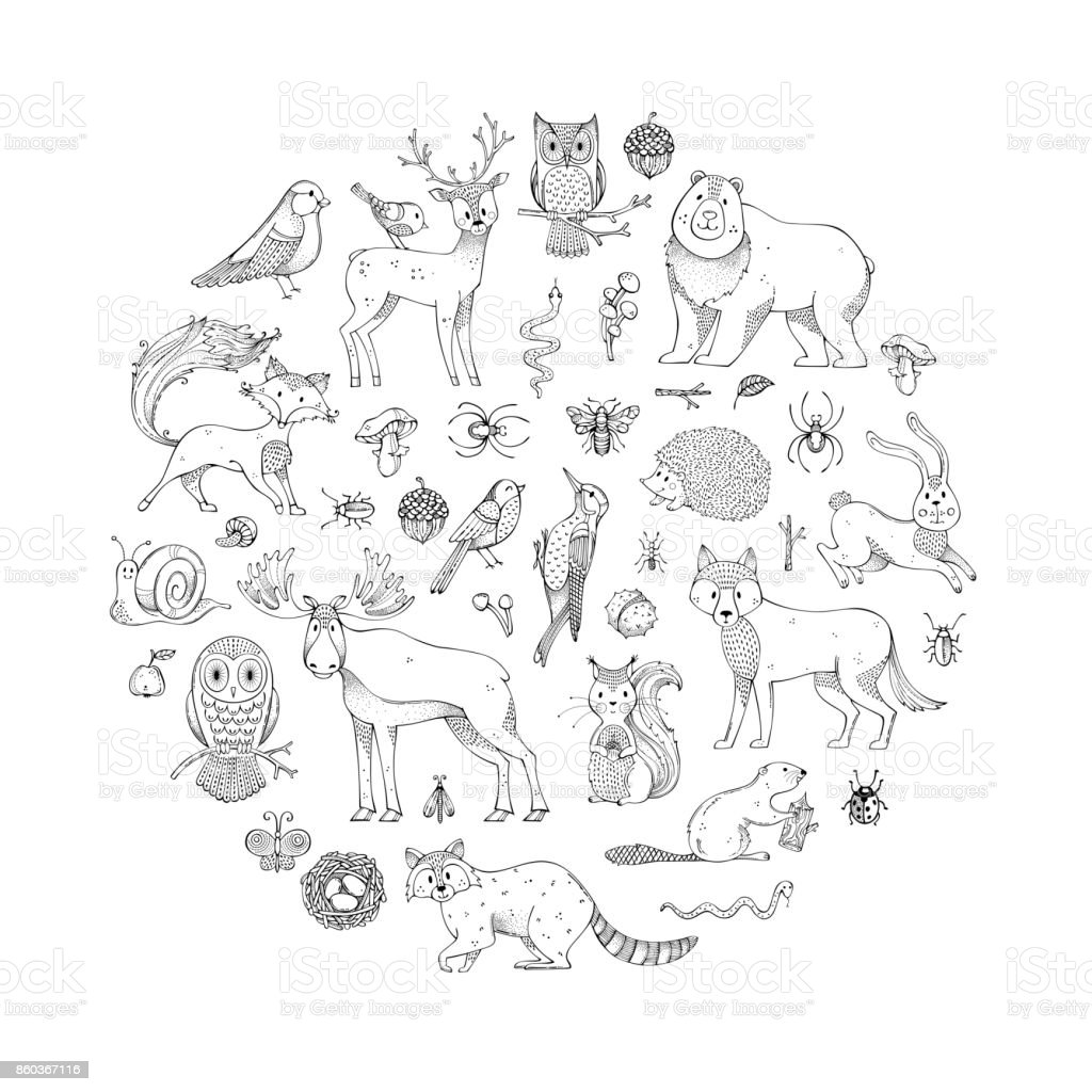 Vector set of doodles wild animals and woodland elements. vector art illustration