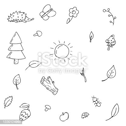 vector set of elements, forest, nature, plants and insects