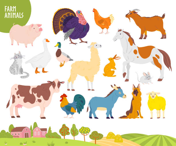 Vector set of farm animal: pig, chicken, cow, horse etc with cozy village landscape, house, garden, field. Vector set of farm animal: pig, chicken, cow, horse etc with cozy village landscape, house, garden, field. White background. Flat hand drawn style. For label, banner, logo, book, alphabet illustration farm animals stock illustrations