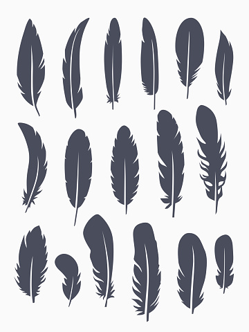 Vector set of feather