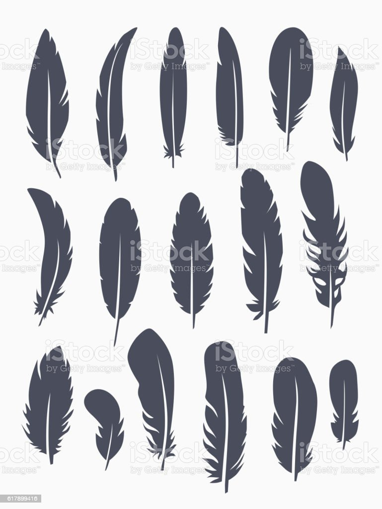 Vector set of feather vector art illustration