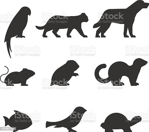 Vector set of figures of pets vector id518327300?b=1&k=6&m=518327300&s=612x612&h=nwe 6nxw9wydehprcyhgwlvoqpitcyx8a9pvo mlp3y=