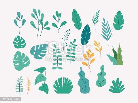 istock Vector set of flat illustrations of plants, trees, leaves 1277101076