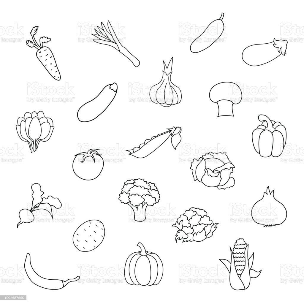 Vector Set Of Fresh Organic Vegetables For Kids Drawing ...