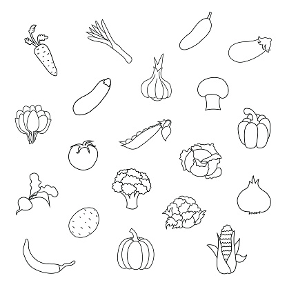 Vector set of fresh organic vegetables for kids drawing. Child vegetable educational outline game page.