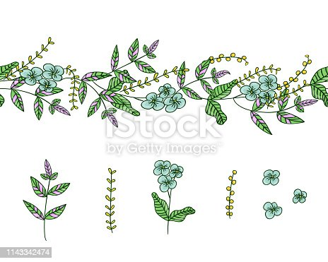 istock Vector set of garden plant design elements and pattern brush with stylized forget-me-not, basil, oregano 1143342474