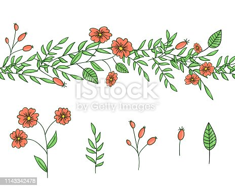 istock Vector set of garden plant design elements and pattern brush with stylized forget-me-not, basil, oregano 1143342478