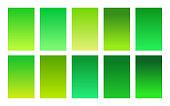 Green foliage color palette gradient background set. Trendy cover for banner, poster, flyer, brochure and presentation. Bright screen design for mobile apps. Vector illustration
